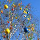 Wielkanocna dekoracja na drzewie